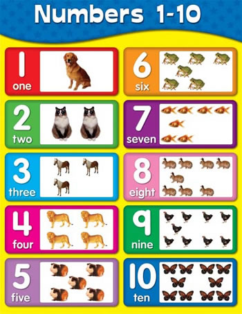NUMBERS 1-10 LAMINATED CHARTLET