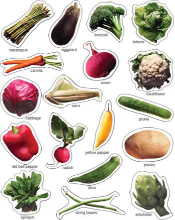 VEGETABLES PHOTOGRAPHIC