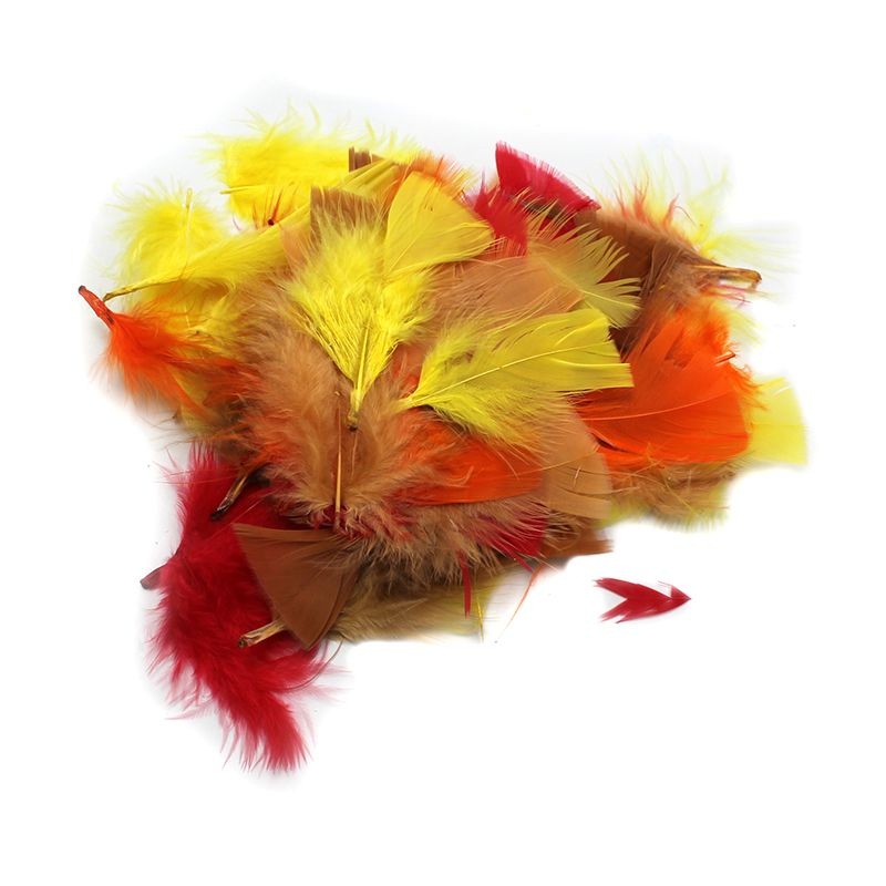 TURKEY FEATHERS AUTUMN COLORS 14G