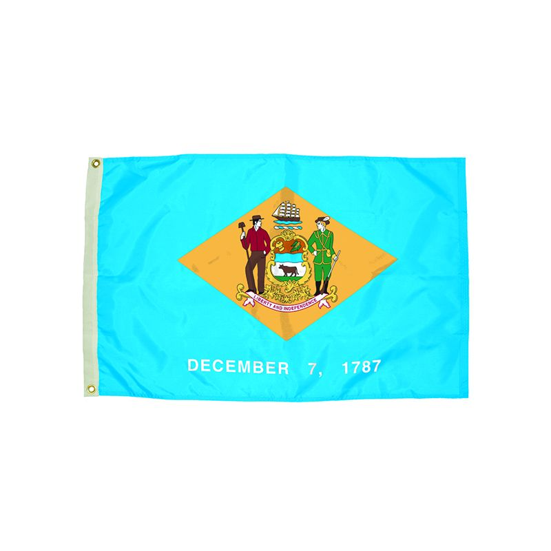 3X5 NYLON DELAWARE FLAG HEADING &