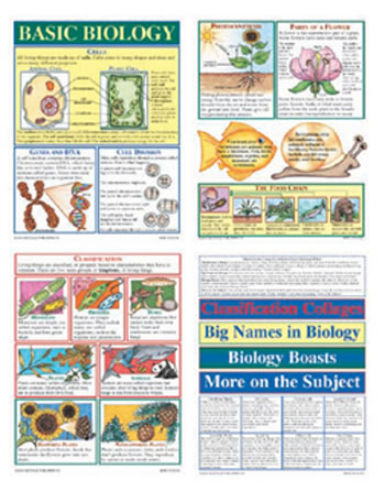 BB SET BASIC BIOLOGY