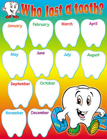 CHART WHO LOST A TOOTH GR K-2 17X22