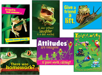 AWESOME ATTITUDE FROGS COMBO SETS