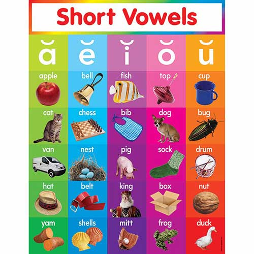 SHORT VOWELS CHART